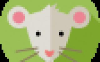 2025 – год какого животного и что он означает?