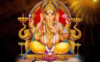 Слон по фэншуй: значение и правила расстановки