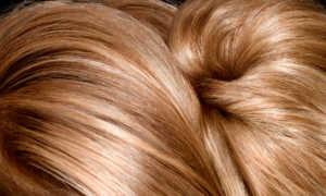 Экранирование волос: особенности, виды и технология проведения