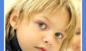 Как определить темперамент ребенка?