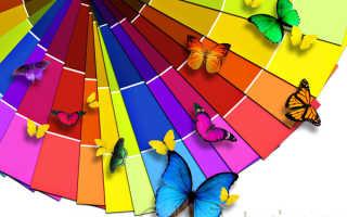 Бордовый цвет в психологии: что он обозначает и символизирует?