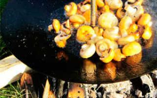 Изготовление сковороды из диска бороны