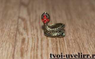 Кольцо-змея: описание и фото