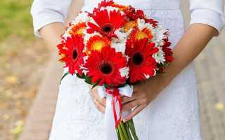 Букет невесты из хризантем: выбор цветов и нюансы оформления