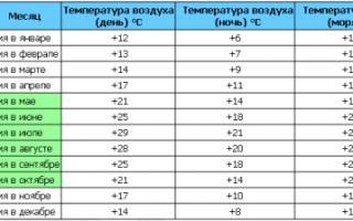 Погодные условия и особенности отдыха в Дженовичах в Черногории
