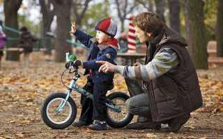 Детские велосипеды от 2 лет: разновидности и рекомендации по выбору