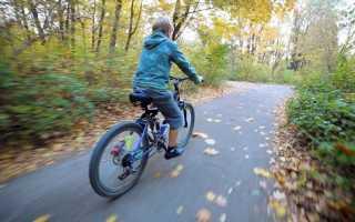 Велосипеды для девочек 7 лет: как выбрать лучший?