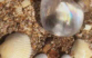 Оксидированное серебро: фото, отзывы