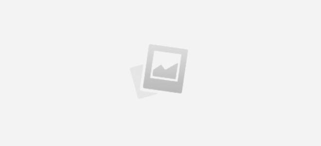 Кошельки DuDu: виды и обзор лучших